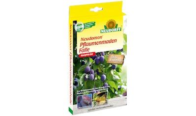 Neudorff Klebefalle »Neudomon Pflaumenmaden«, zum Monitoring kaufen