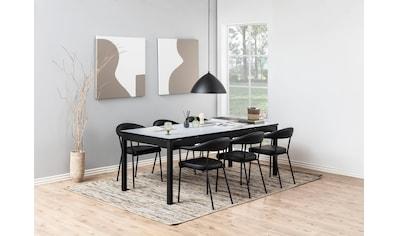andas Esszimmerstuhl »Alice«, 2er Set, aus schönem Kunstleder Bezug, schwarze Metallbeine, Sitzhöhe 48 cm kaufen