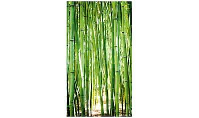 Bodenmeister Fototapete »Bambus-Wald grün« kaufen
