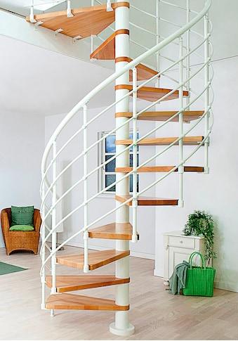 Dolle Spindeltreppe »Oslo«, Ø: 120 cm kaufen