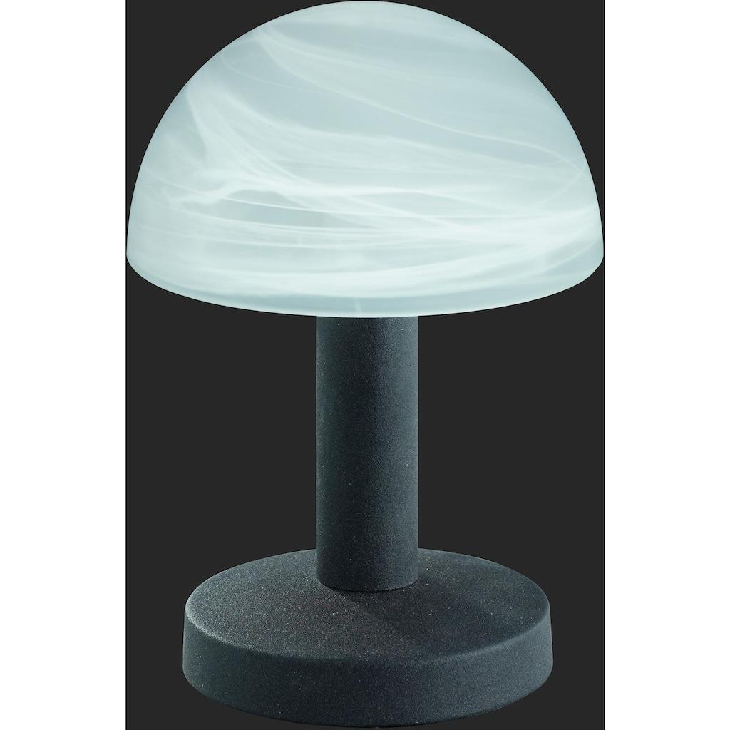 TRIO Leuchten Tischleuchte »Fynn«, E14, 2er Set mit 4-fach TOUCH, Leuchtmittel tauschbar