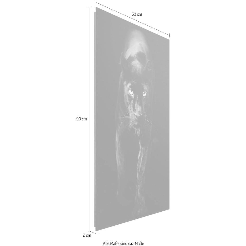 Reinders! Deco-Panel »Schwarzer Panther«