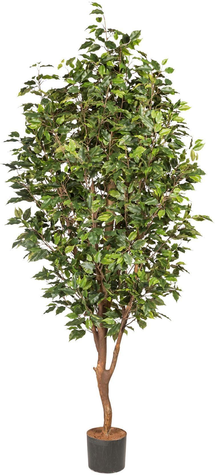 Kunstpflanze Ficus Benjamini Wohnen/Accessoires & Leuchten/Wohnaccessoires/Kunstpflanzen/Kunstbäume