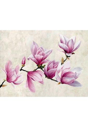 Home affaire Deco-Panel »LUCA VILLA / Ramo di Magnolia«, 80/60 cm kaufen