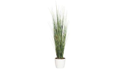 Creativ green Kunstgras »Equisetumgras mit Blüten« (1 Stück) kaufen