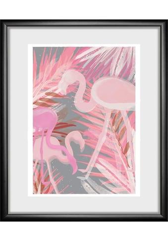 queence Bild »Flamingo«, 30/40 cm, gerahmt kaufen