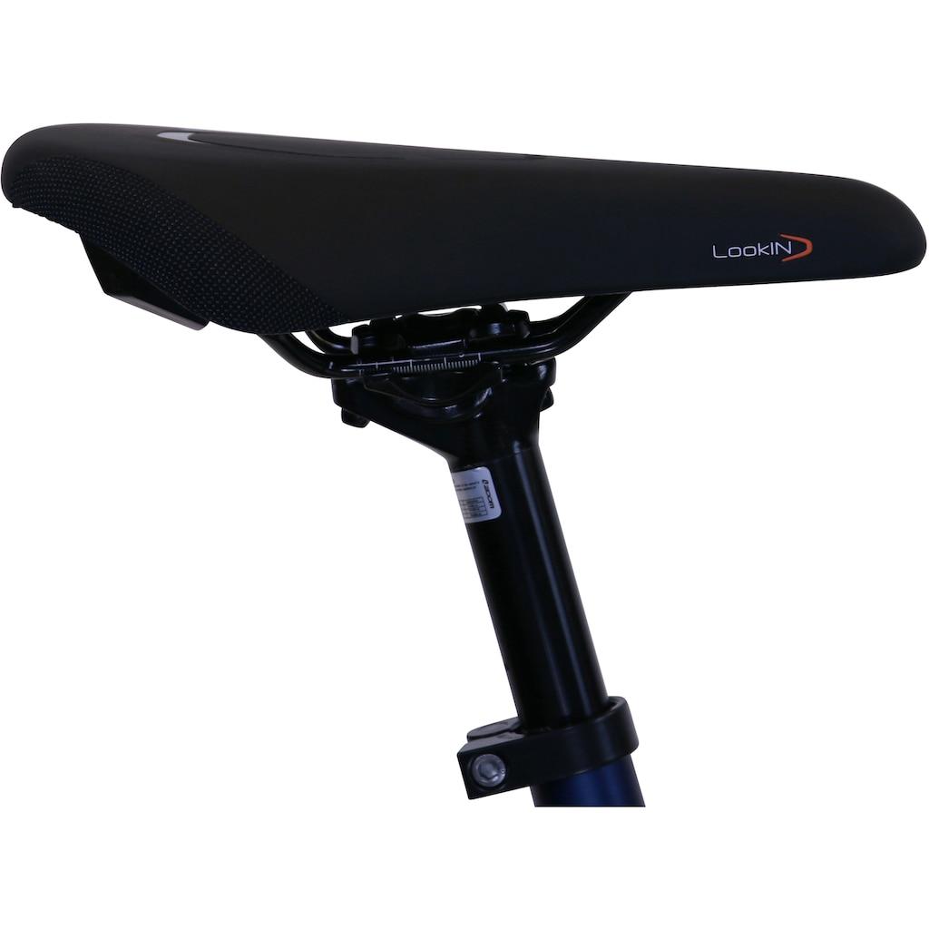 HAWK Bikes Trekkingrad »HAWK Trekking Gent Super Deluxe Plus Ocean Blue«, 8 Gang, Shimano, Nexus Schaltwerk