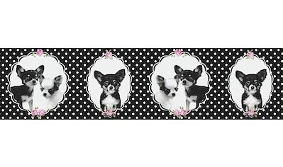 LIVINGWALLS Bordüre »Little Stars mit Chihuahuas«, für das Kinderzimmer, Vlies, PVC - frei kaufen