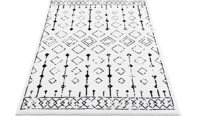Teppich, »Karima«, DELAVITA, rechteckig, Höhe 12 mm, maschinell gewebt kaufen