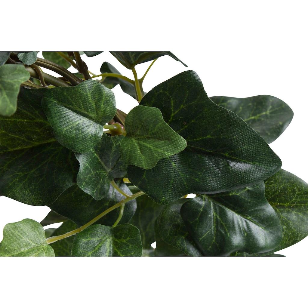 Botanic-Haus Künstliche Zimmerpflanze »Efeubogen im Topf«