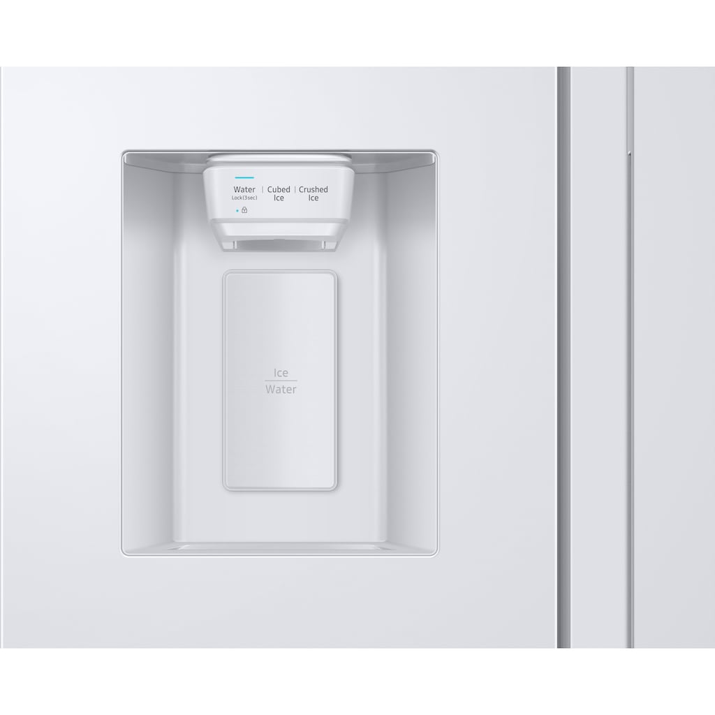 Samsung Side-by-Side »RS6GA8831WW«