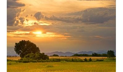 Papermoon Fototapete »Sonnenuntergangslandschaft«, Vliestapete, hochwertiger Digitaldruck kaufen