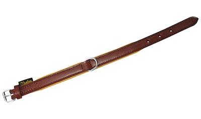 HEIM Hundehalsband »Ranger«, braun, Länge: 35  -  65 cm kaufen