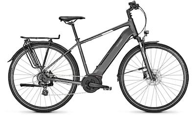 Raleigh E - Bike »KENT LTD«, 8 Gang Shimano Altus Schaltwerk, Kettenschaltung, Mittelmotor 250 W kaufen