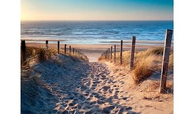 Home affaire Leinwandbild »Sandstrand« kaufen
