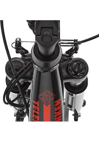 Telefunken E - Bike »RC657 Multitalent«, 7 Gang Shimano Nexus Schaltwerk, Nabenschaltung, Frontmotor 250 W kaufen