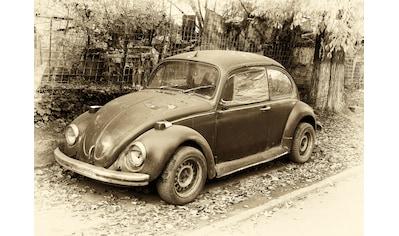 Papermoon Fototapete »Käfer Retro Auto«, Vliestapete, hochwertiger Digitaldruck kaufen