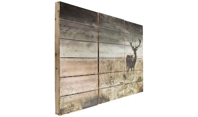 Art for the home Holzbild »Woodland Stag«, Hirsche, (3 St.) kaufen