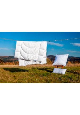 Dunlopillo Microfaserbettdecke »Home«, warm, (1 St.) kaufen