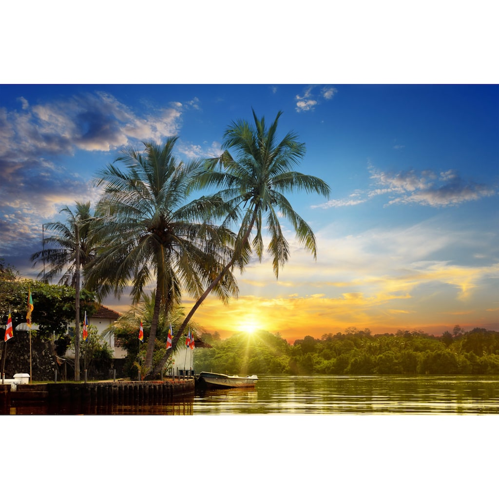 Papermoon Fototapete »Tropischer Palmen-Sonnenaufgang«, Vliestapete, hochwertiger Digitaldruck