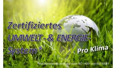 BeCo EXCLUSIV Lattenrost »Super Fix«, 28 Leisten, Kopfteil nicht verstellbar, 7-Zonen Lattenrost zerlegt im Karton kaufen