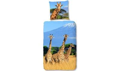 good morning Kinderbettwäsche »Spot«, mit Giraffen kaufen