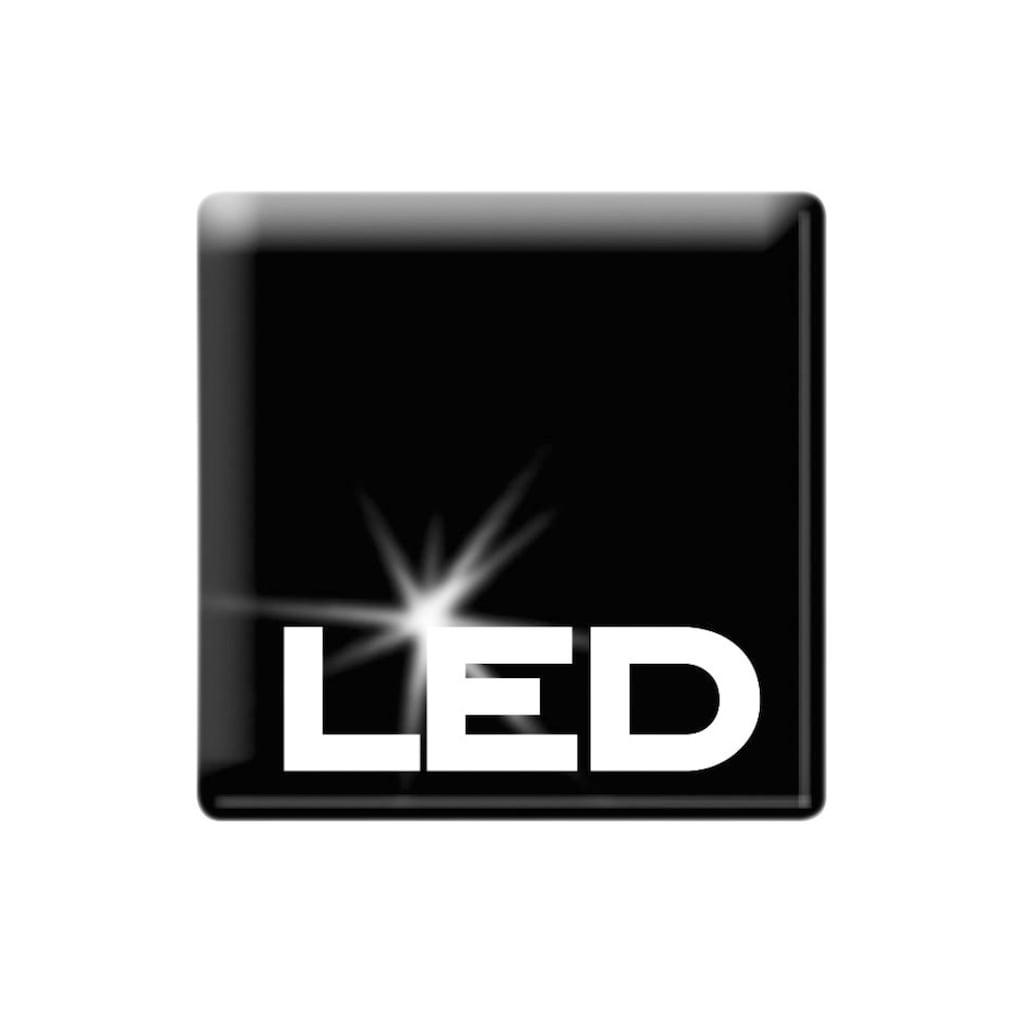 LED-Lichterkette »Beere«
