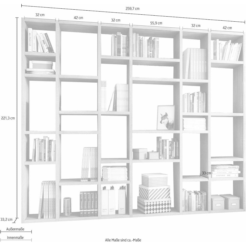 fif möbel Raumteilerregal »TORO 381«, Breite 260 cm