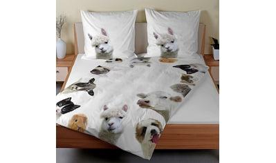 TRAUMSCHLAF Bettwäsche »Alpaka, Hund, Schaf, Katze«, Tierisches Design mit seidigem Glanz kaufen