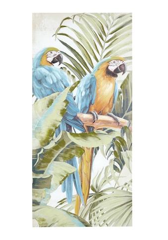 Bild Papagei, Blätter kaufen