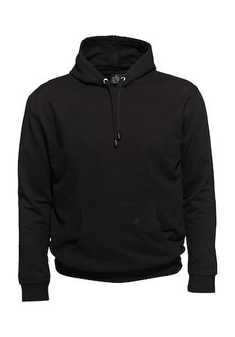 AHORN SPORTSWEAR Kapuzensweatshirt, in schlichtem Design kaufen