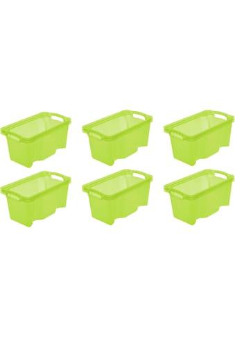keeeper Aufbewahrungsbox »franz« (Set, 6 Stück) kaufen