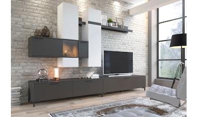 INOSIGN Wohnwand »Alternative« kaufen