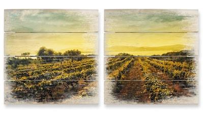 Wall-Art Mehrteilige Bilder »Weinreben im Sonnenuntergang«, (Set, 2 St.) kaufen
