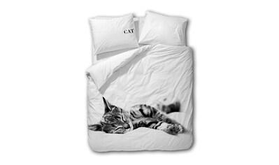 TRAUMSCHLAF Bettwäsche »Cat«, schönes Katzen Motiv kaufen