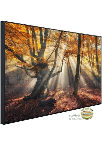 Papermoon Infrarotheizung »Magische alte Bäume«, sehr angenehme Strahlungswärme kaufen