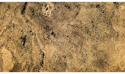 Slate Lite Dekorpaneele »Translucent Negro«, aus Echtstein kaufen