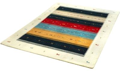 Dekowe Wollteppich »Apjuna«, rechteckig, 13 mm Höhe, reine Wolle, Orient-Optik, Gabbeh Design, mit Bordüre, Wohnzimmer kaufen