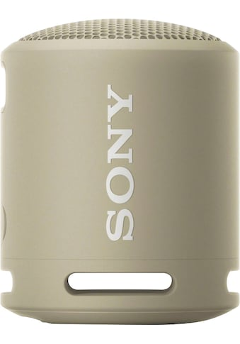 Sony Bluetooth-Lautsprecher »SRS-XB13 Tragbarer« kaufen