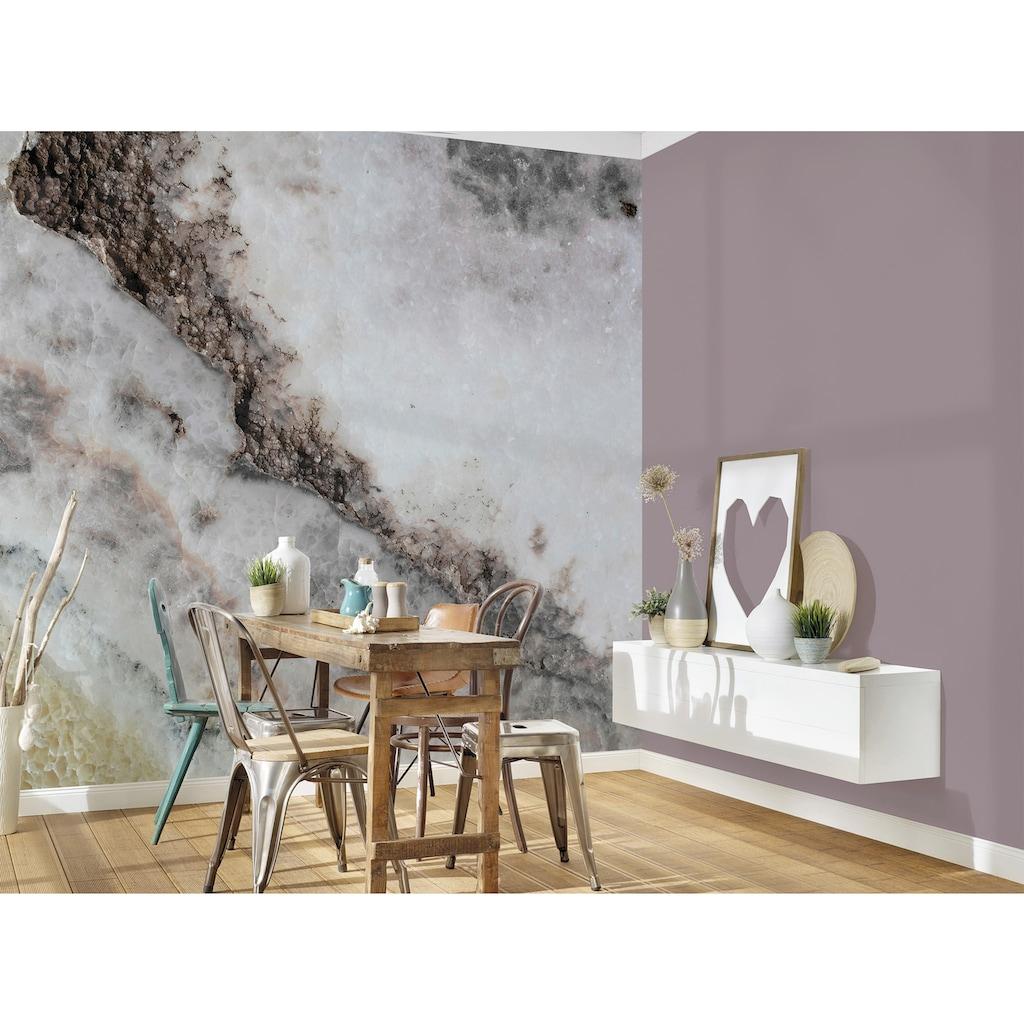 living walls Fototapete »Designwalls Rose Quartz«