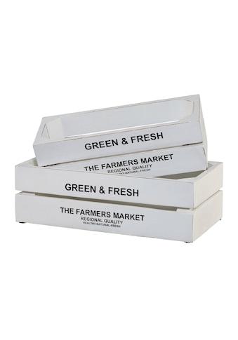 Creativ home Kiste »Green&Fresh«, (Set, 2), 2er Set kaufen
