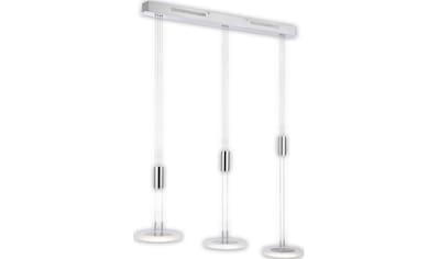 FISCHER & HONSEL LED Pendelleuchte »Diskus«, LED-Modul, Warmweiß kaufen