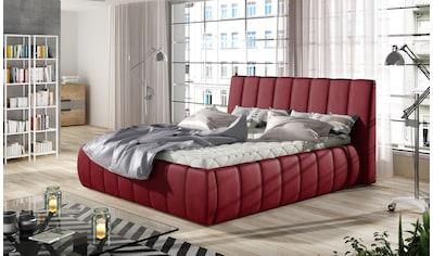 INOSIGN Polsterbett »Veneto«, wahlweise ohne Lattenrost/Matratze oder mit Lattenrost und Taschenfederkern-Matratze, große Schublade als Stauraum kaufen
