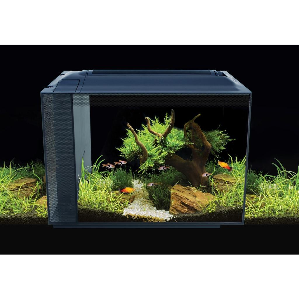 FLUVAL Aquarium