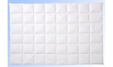 Centa-Star Gänsedaunenbettdecke »Glamour«, leicht, Füllung 100% Gänsedaunen, Bezug 100% Baumwolle, (1 St.), erste Wahl für Kenner guten Schlafs - beste Gänsedaunen im Seiden-Satin-Bezug kaufen
