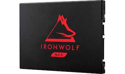Seagate externe SSD »IronWolf 125«, Inklusive 3 Jahre Rescue Data Recovery Services kaufen