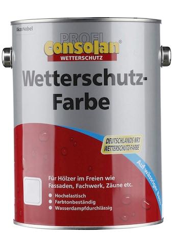Consolan Wetterschutzfarbe »Profi Holzschutz«, 2,5 Liter, grau kaufen