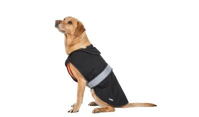 Trespass Hundejacke »Softshell- Butch mit Klettverschluss«, Polyester, (1) kaufen