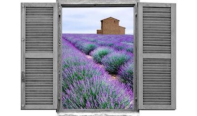 queence Wandtattoo »Lavendelfeld« (1 Stück) kaufen