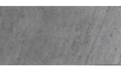 Slate Lite Dekorpaneele »EcoStone Silver Grey«, aus Echtstein kaufen